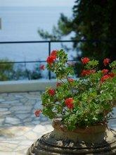 Sunshine Corfu Hotel & Spa 4*.  #17