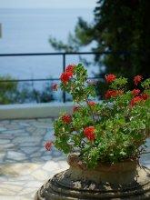 Отель Sunshine Corfu Hotel & Spa 4* #7