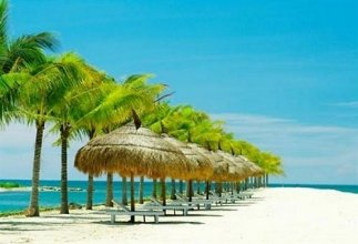 Luxury Nha Trang Hotel 3* #1
