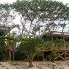 Отель Rarotonga Villas, фото 33