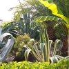 Гостевой Дом Ла Коста, фото 27
