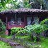 Отель Onong's Palace Resort в Томохоне