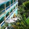 Отель The Lazy Parrot Inn в Ринконе