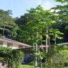 Отель Atupa Orchid Units, фото 9
