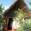 Отель Hôtel Lodge La Pirogue Mahambo в Махамбо