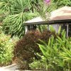 Отель The Legend Garden Condos, фото 31