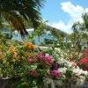 Отель Timothy Beach Resort во Фригейт-Бэй