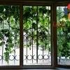 Гостевой Дом Light Wings в Ереване