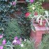 Гостевой дом Катерина, фото 14