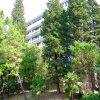 Апартаменты Светлана-Сочи, фото 21