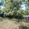 Гостевой Дом Фазанья роща, фото 19