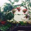 Гостиница Guest House Lika, фото 6