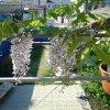 Гостиница Guest House Anastasiya, фото 11