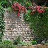 Гостевой дом Floral Courtyard, фото 35