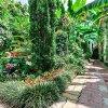 Мини-отель Банановый рай, фото 30