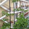 Гостиница Margo Guest House в Сочи