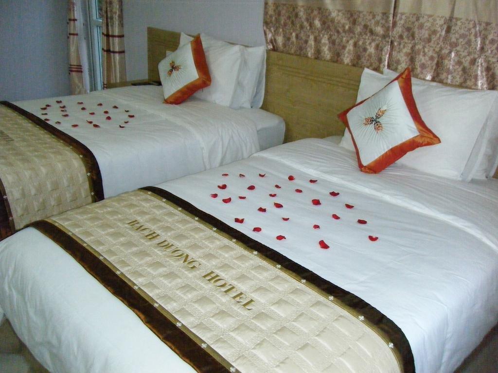 Отель Bach Duong Hotel в Дуонг-Ламе