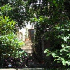 Hotel Dubrava Будва фото 11