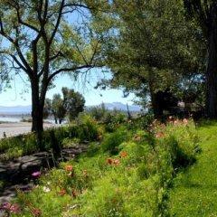 Отель Tioga Lodge at Mono Lake США, Ли Вайнинг - отзывы, цены и фото номеров - забронировать отель Tioga Lodge at Mono Lake онлайн фото 7