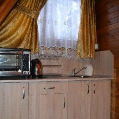 Отель Villa Malina Болгария, Боровец - отзывы, цены и фото номеров - забронировать отель Villa Malina онлайн удобства в номере фото 2