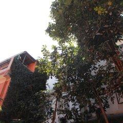 Отель Ojas Wellness B & B Непал, Лалитпур - отзывы, цены и фото номеров - забронировать отель Ojas Wellness B & B онлайн фото 2