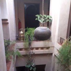 Отель Dar Bladi Марокко, Уарзазат - отзывы, цены и фото номеров - забронировать отель Dar Bladi онлайн фото 9