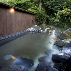 Отель Ryokan Ichinoi Минамиогуни бассейн фото 3