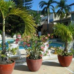 Отель El Tropicano бассейн фото 2