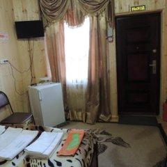 Lesnaya Skazka Hotel удобства в номере