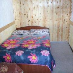 Отель B&B at Bailanysh Кыргызстан, Каракол - отзывы, цены и фото номеров - забронировать отель B&B at Bailanysh онлайн комната для гостей фото 5