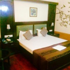Отель Green Valley(Nehru Place) - Boutique Hotel Индия, Нью-Дели - отзывы, цены и фото номеров - забронировать отель Green Valley(Nehru Place) - Boutique Hotel онлайн комната для гостей фото 4