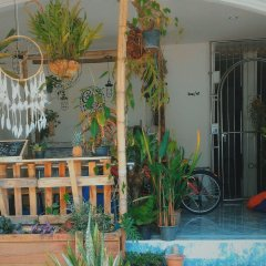 The Camp Hostel Phuket детские мероприятия