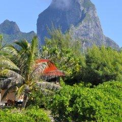 Отель Le Crusoe Французская Полинезия, Бора-Бора - отзывы, цены и фото номеров - забронировать отель Le Crusoe онлайн пляж фото 10