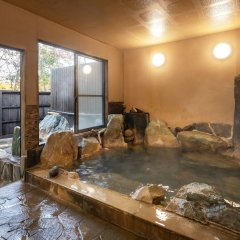 Отель Ryokan Hanagokoro Минамиогуни бассейн фото 3