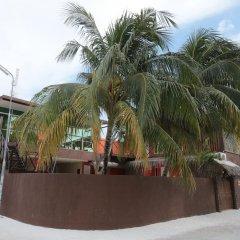 Отель Amvoj Maldives Thulusdhoo Остров Гасфинолу пляж фото 2