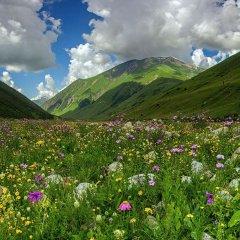 Гостиница Golden Tulip Rosa Khutor (Голден Тюлип Роза Хутор) фото 5