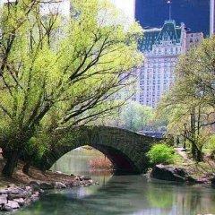 Отель Sutton Court Hotel Residences США, Нью-Йорк - отзывы, цены и фото номеров - забронировать отель Sutton Court Hotel Residences онлайн бассейн