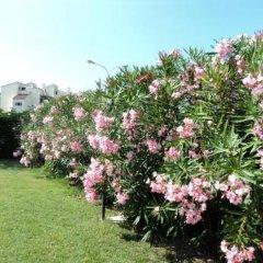 Отель Vila Bahia Италия, Нумана - отзывы, цены и фото номеров - забронировать отель Vila Bahia онлайн