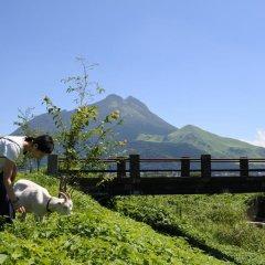 Отель Secret Base Tokinokakera Хидзи с домашними животными