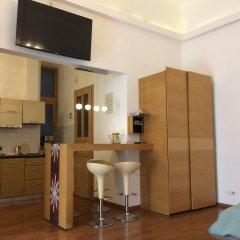 Апартаменты Liszt Studios Apartment Будапешт в номере фото 2