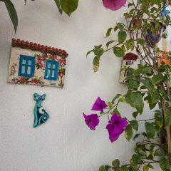 Maya Bistro Hotel Beach фото 8