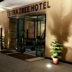 Отель Tetra Tree Hotel Иордания, Вади-Муса - отзывы, цены и фото номеров - забронировать отель Tetra Tree Hotel онлайн интерьер отеля фото 2