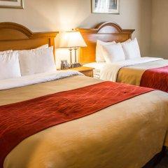 Отель Comfort Inn JFK Airport США, Нью-Йорк - 1 отзыв об отеле, цены и фото номеров - забронировать отель Comfort Inn JFK Airport онлайн комната для гостей фото 3