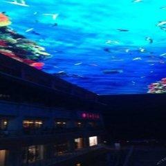 Отель Yulong International Hotel Китай, Сиань - отзывы, цены и фото номеров - забронировать отель Yulong International Hotel онлайн бассейн