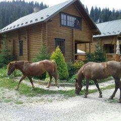 Hotel Khatky Ruslany с домашними животными