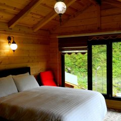 Ayder Elizan Hotel комната для гостей фото 3