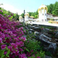 Отель Elf Pension Южная Корея, Пхёнчан - отзывы, цены и фото номеров - забронировать отель Elf Pension онлайн фото 5