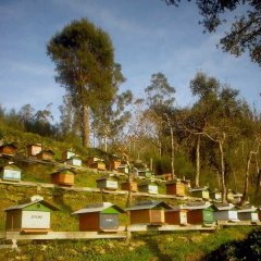 Hotel de Naturaleza La Pesqueria del Tambre фото 11