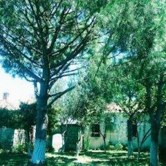Athena Pension Турция, Дикили - отзывы, цены и фото номеров - забронировать отель Athena Pension онлайн фото 4