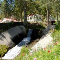 Отель Tioga Lodge at Mono Lake США, Ли Вайнинг - отзывы, цены и фото номеров - забронировать отель Tioga Lodge at Mono Lake онлайн фото 5